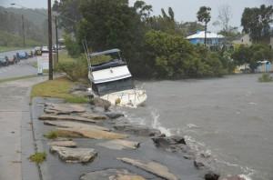 Brisbane waters drive 2